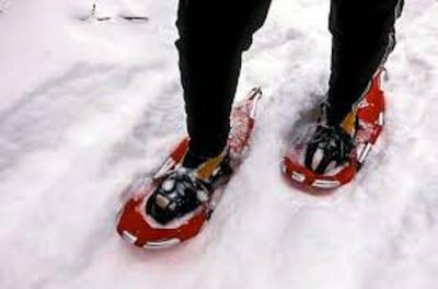 New Snowshoe trails alson the Jackson Ski Touring area