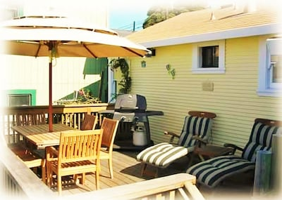 Exit Kitchen to the Backyard Deck. Teak Furniture, BBQ and views of the Garden.