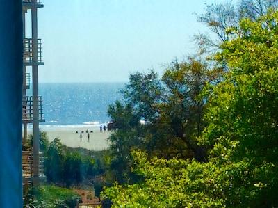 Ocean & beach as viewed through our picture window