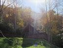 Morning Glory Early Fall from Sledrunner Rd