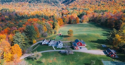 View from above in the fall