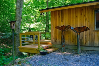 Deck Entry overlooks the gulch with big Beech Trees.