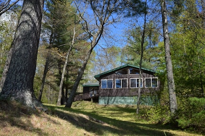 Great cabin painted in the classic national forest brown and surrounded by trees