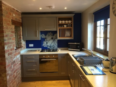 Indroducing 'Gertie' cow on blue in the kitchen