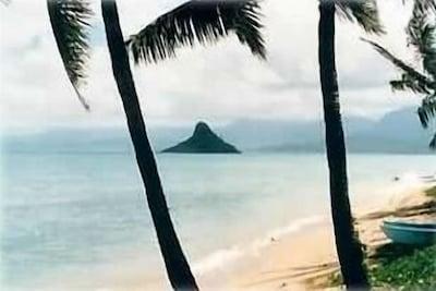Kualoa Beach Park, Kaneohe, Hawaï, États-Unis d'Amérique