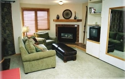 LR - newer TV than in photo, murphy bed behind mirror plus sofa sleeper
