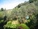 Ausblick vom Garten