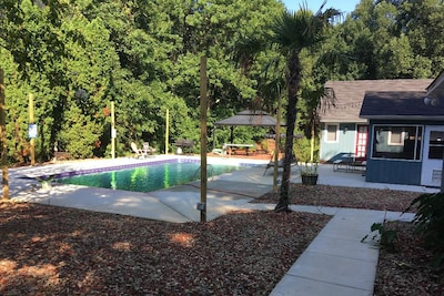 Back of the home, with newly-renovated pool, including two palm trees and string