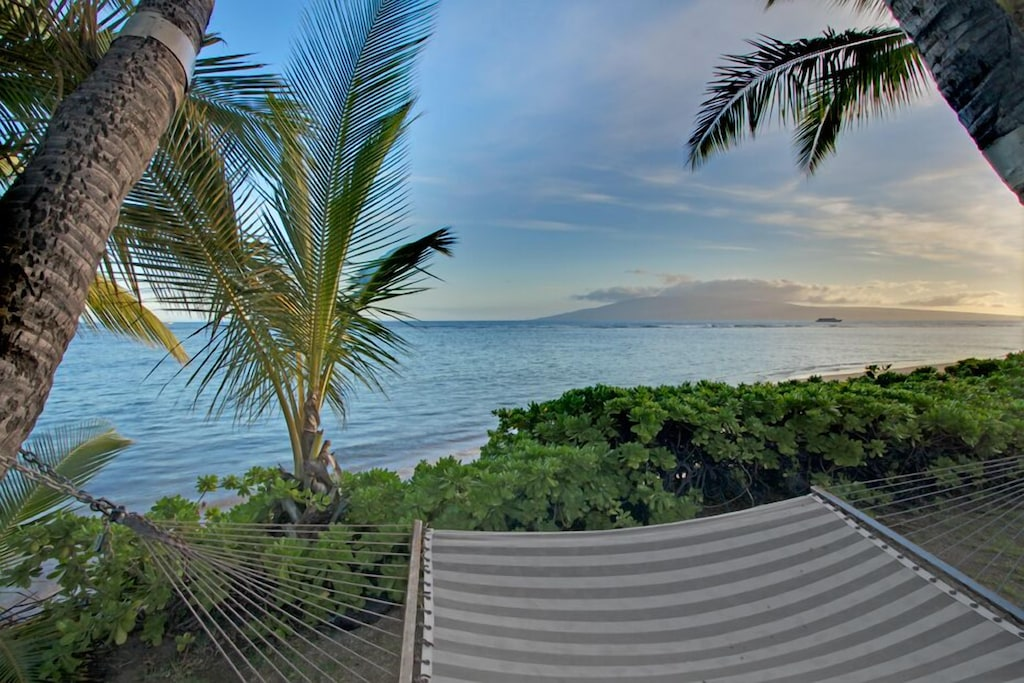 Hammock in a garden with ocean views