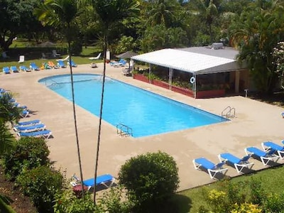 Our shared 25m swimming pool with sun loungers, umbrellas and a poolside bar/restaurant