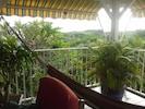 environnement de la terrasse