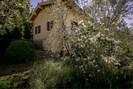 Pflanze, Gebäude, Fenster, Himmel, Haus, Natürliche Landschaft, Baum, Blume, Gras, Strauch