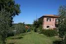 Pflanze, Himmel, Fenster, Baum, Grundstueck, Vegetation, Steigung, Gebäude, Haus, Gras