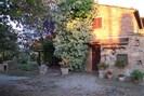 Pflanze, Gebäude, Fenster, Blumentopf, Blatt, Vegetation, Strassenbelag, Haus, Biome, Baum