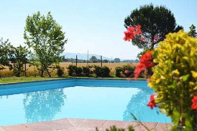 Wasser, Pflanze, Himmel, Schwimmbad, Blume, Azurblau, Natur, Baum, Gras, Natürliche Landschaft