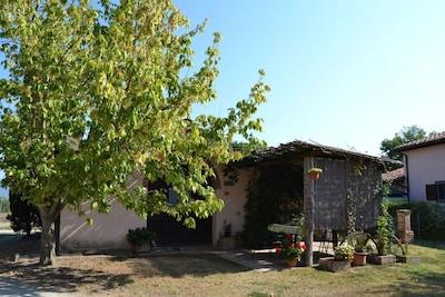 Baum, Eigentum, Haus, Zuhause, Pflanze, Gehölz, Grundeigentum, Ländliches Gebiet, Himmel, Gebäude