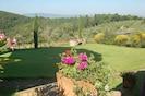Natur, Blume, Garten, Natürliche Landschaft, Eigentum, Pflanze, Gras, Botanik, Baum, Landschaft