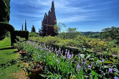 Garden, Scenic View