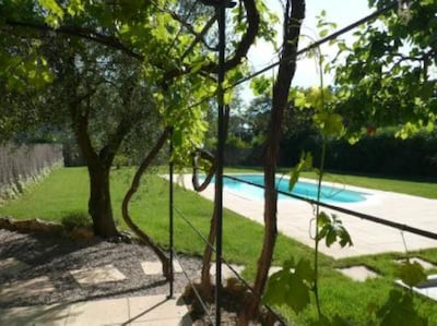 Jardin / Piscine