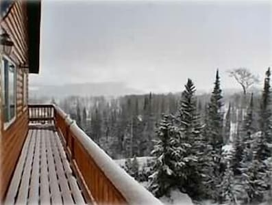 Upstairs Deck View, let it snow, let it snow!