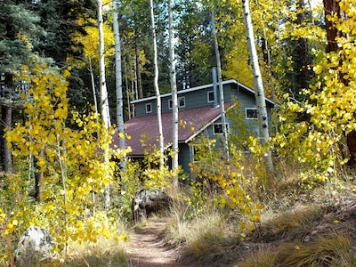 Fall is colorful. Take a hike among the aspens in national forest.