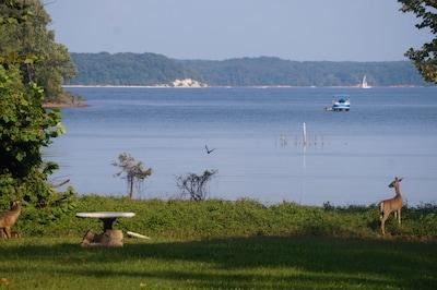 The backyard. Across the lake is LBL.