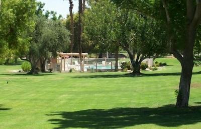 Backyard of Condo