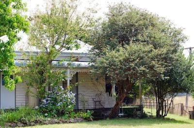 Reidsdale, New South Wales, Australia