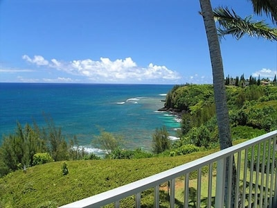 lanai view to the east
