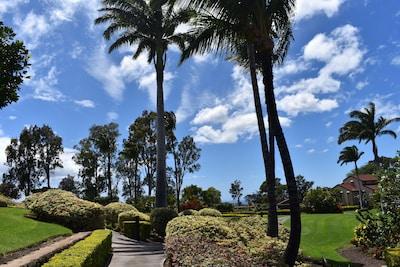Tropical paradise surrounds you