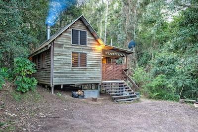 Sunshine Coast Hinterland Great Walk (chemin de randonnée), North Maleny, Queensland, Australie
