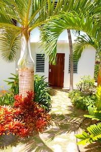 Front Door and orchid garden