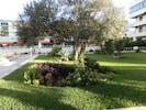 Jardin- garden