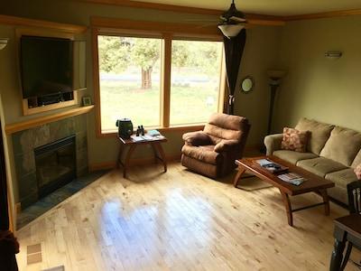 Main Level Living Room area - Gas fireplace and queen size pull out sofa sleeper