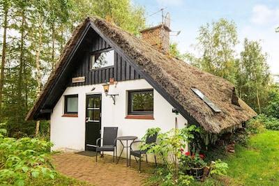 Braedstrup, Midtjylland, Denmark