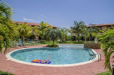 Our refreshing swimmingpool! made for adults and children
