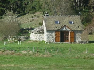 Wölfe von Gévaudan, Saint-Léger-de-Peyre, Lozère, Frankreich