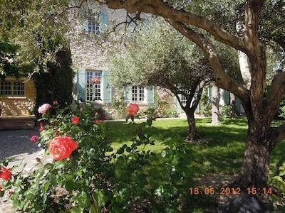 Tavel, Gard, France