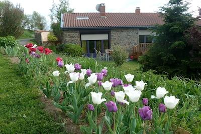 Ferme Seigne, Panissieres, Loire, France