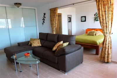 Open plan living room with privacy screen surrounding bedroom
