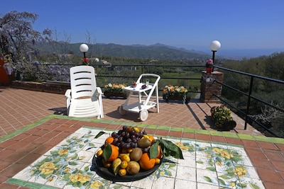 Terrace with panoramic view