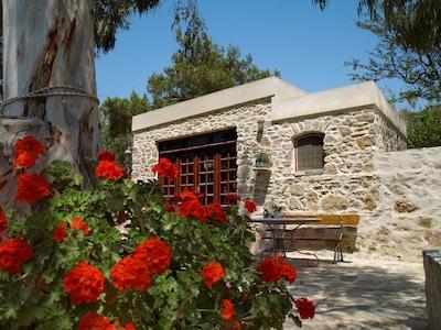 Manna, Syros, Südliche Ägäis, Griechenland