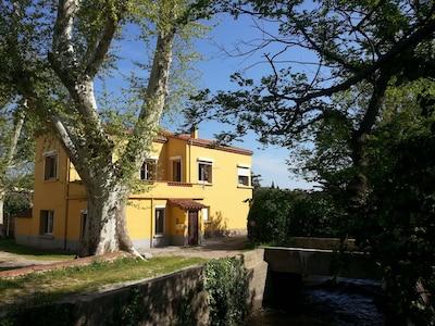 Thuir, Pyrénées-Orientales, France