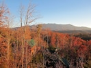 Fall view!