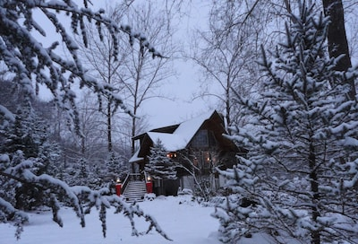 APPALACHIAN LOG CABIN on RIVER  WINTER SMOKIES HOLIDAY  *Easily accessible*