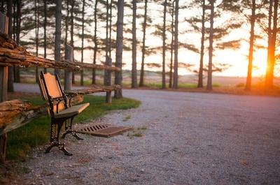 Awaken to nature's beauty at Whispering Pines Retreat!