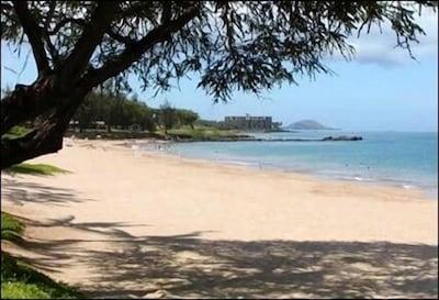 Another Maui Beach