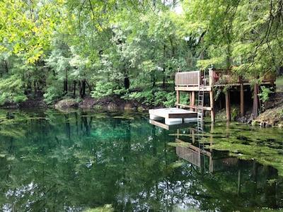 Suwannee River, Florida, United States of America