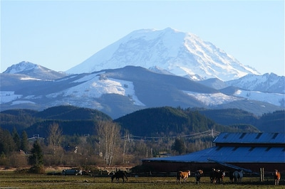 Mt Rainer and the Dairy Farm from the deck