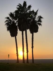 Venice Beach, Venice, Californie, États-Unis d'Amérique